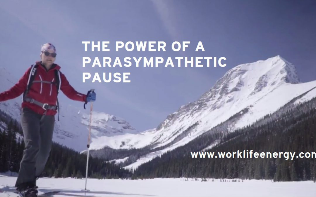 Work-Life Recharge 14 – A Parasympathetic Pause?