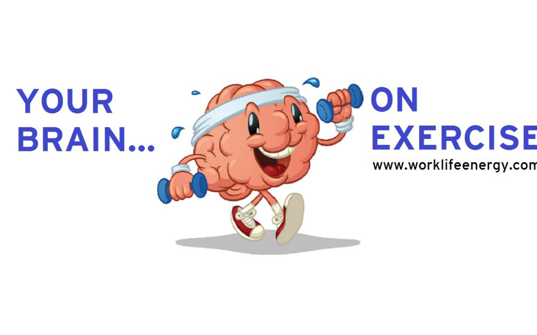 Success-Energy Lab: Your Brain… On Exercise