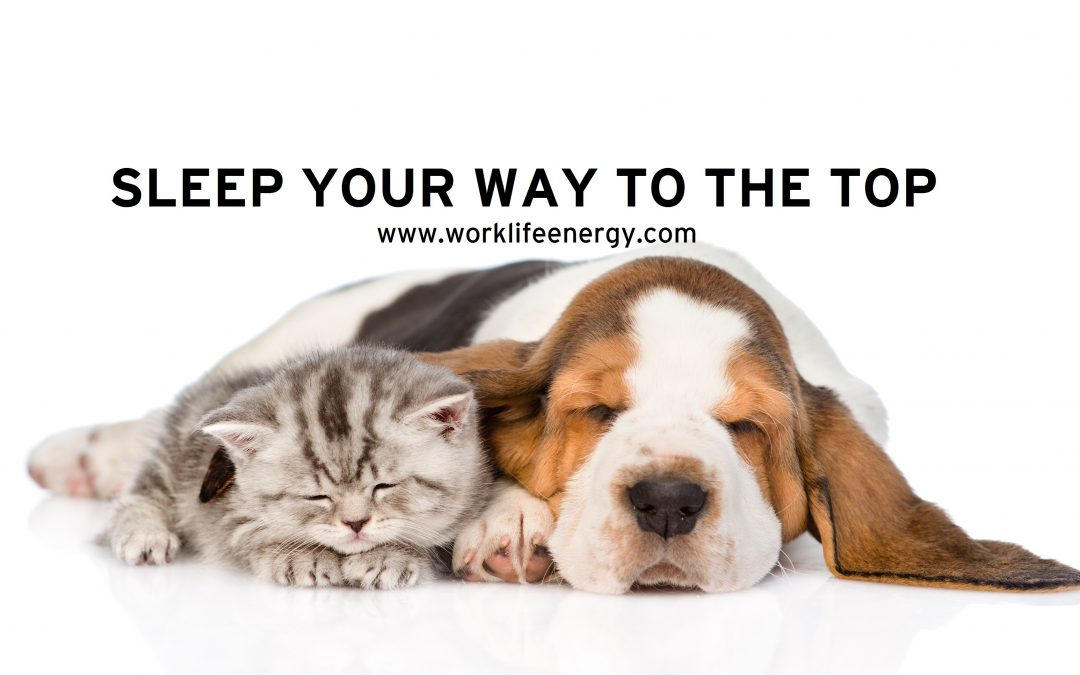 Work-Life Recharge 22 – Sleep Your Way to the Top