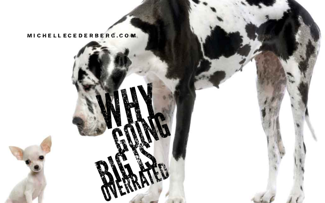 Why Going Big is Over-rated