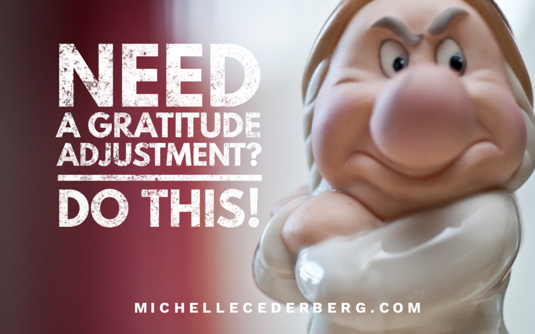 Need a Gratitude Adjustment? Do This!