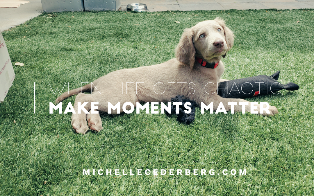 When Life Gets Chaotic, Make Moments Matter